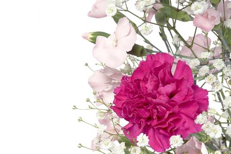 bright pink carnation in flora bouquet