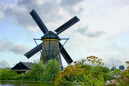 holland windmill: Dutch windmill and wildflowers by river in the Kinderdijk Netherlands