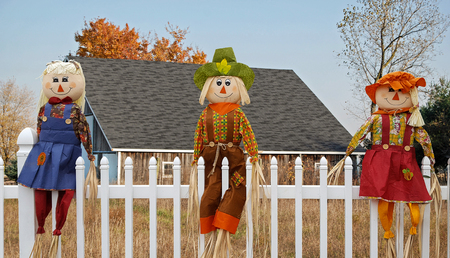 Autumn scarecrow dolls on white picket fence with rural barn background