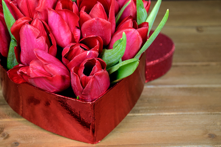 closeup of red tulips in heart box on rustic wood