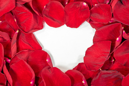 closeup background of red rose petals with white heart center Stock Photo