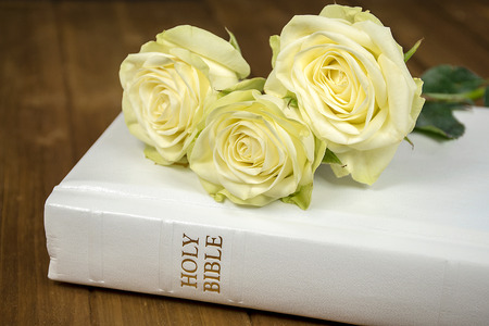 roses and white Holy Bible on dark wood Stock Photo