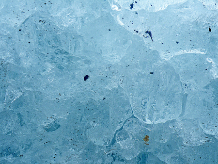 close up of blue ice with plant and dirt on Alaskan iceberg