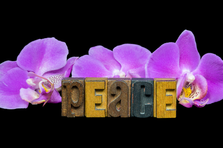 word peace in vintage wood letterpress typeset with bold pink orchids on black Stock Photo