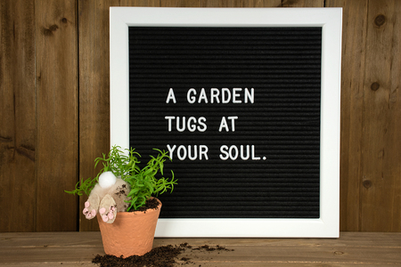 inspirational garden quote on message board with bunny in potted plant and dirt on wood