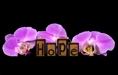 word hope in letterpress typeset with pink orchid blossom on black