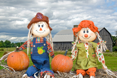 Pair of autumn scarecrow dolls on hay bale with rural wooden barn in background