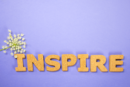 word inspire with Queen Annes Lace on purple background Stock Photo