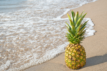 tropical pineapple on sandy beach with frothy water Stock Photo