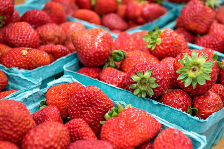 close up of ripe strawberries in turquoise produce boxes at the market Stock Photo