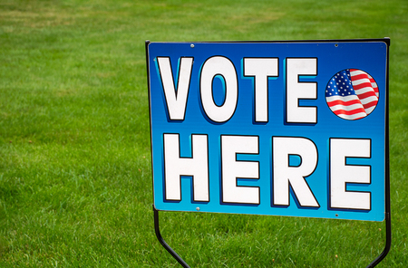 patriotic election voting sign on green grass