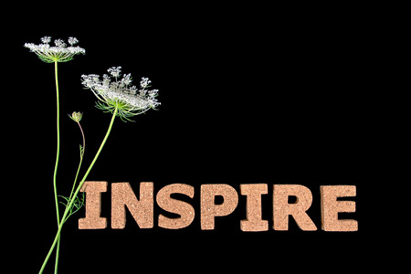 word inspire in cork material on black with Queen Anne Lace bouquet
