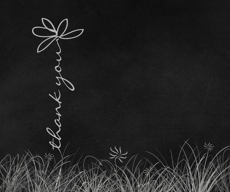 Thank you daisy text in grass on black chalkboard