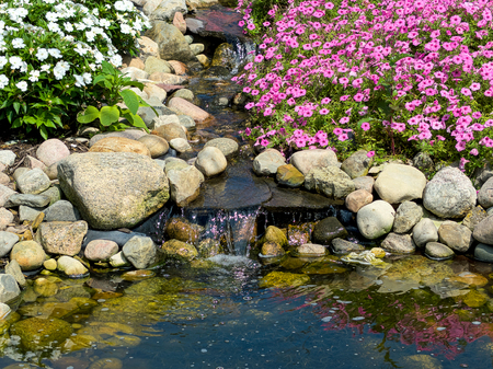 close up of summer rock garden with pink petunia plants and waterfall by pond Stock Photo