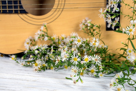 close up of white aster bunch with guitar on rustic whitewashed wood Stock Photo