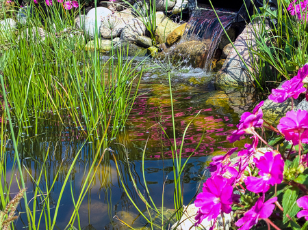 ornamental grass and pink impatiens flowers in rock garden with waterfall