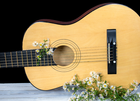 aster wildflowers with six string acoustical guitar on whitewashed wood