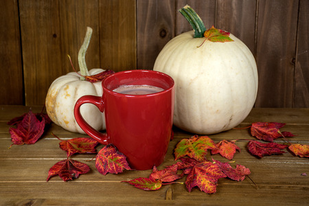 hot chocolate in red mug with white pumpkins and autumn leaves on rustic wood