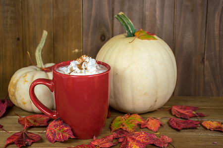 hot chocolate drink with whipped cream topping in red mug with fall leaves and white pumpkins on rustic wood
