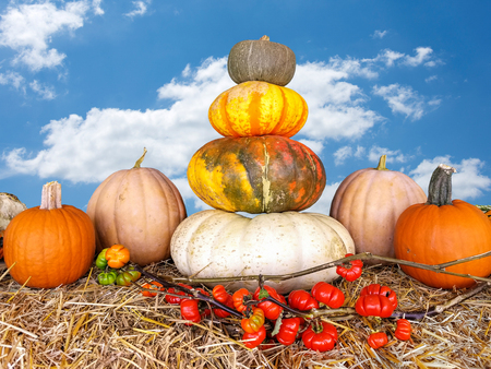 stacked autumn pumpkins on hay bale with sky background