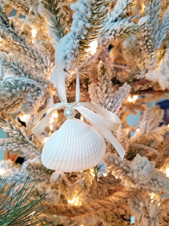 close up of seashell ornament with pearl and bow hanging on Christmas pine tree