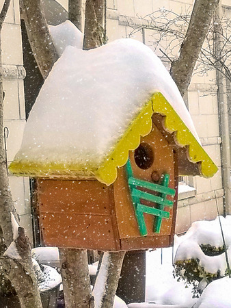 snow on yellow birdhouse roof hanging on tree Stock Photo