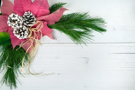 red poinsettia flower and pine cones with green pine branch and raffia bow on rustic whitewashed wood