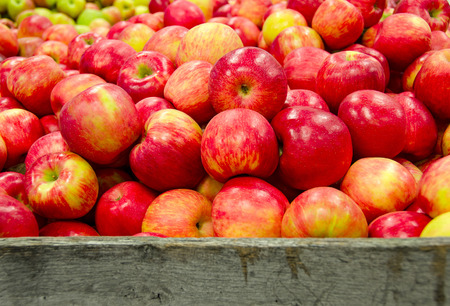 red and yellow Michigan apples in rustic wooden crate Stock Photo