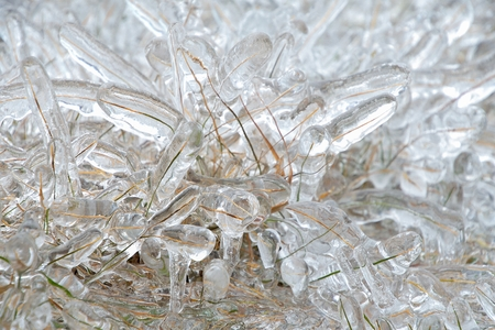 blades of grass covered with thick layer of ice Stock Photo