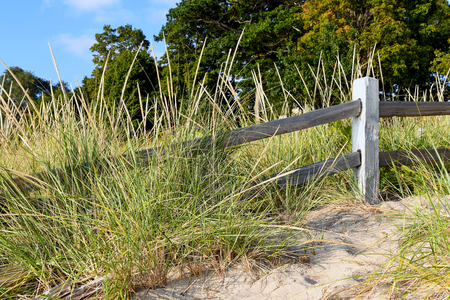 rustic weathered fence in dune grass on Michigan sand dune
