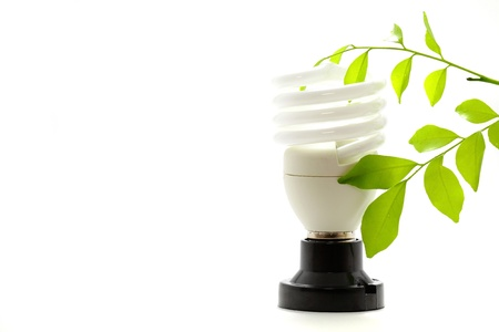 Lamp and Eco Stock Photo - 11299041