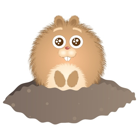 ground: Little groundhog peeking out of their burrows. Vector illustration.
