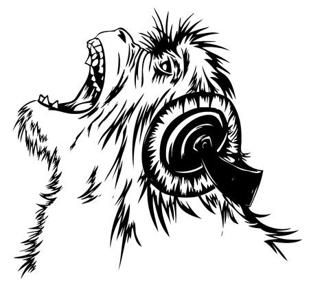 gorila: El mono está escuchando música en los auriculares con el jugador.