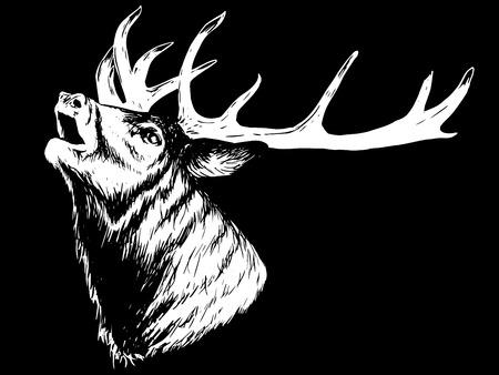Horned deer howling on a black background.