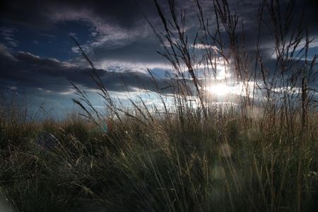 a landscape on the side of Chaka Salt Lake 版權商用圖片