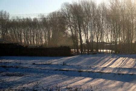 Arctic Village in Mohe County 版權商用圖片