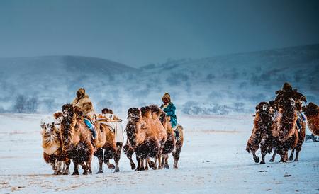 xi 林郭ル草原で、雪でラクダのライダー 写真素材