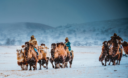 xi lin guo le prairie with camel rider at snow Фото со стока - 87659386