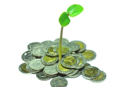 economy Stock Photo - 12677909