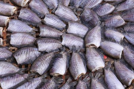 pectoralis: Snake Skin Gourami Fish,Pla Salit Trichogaster pectoralis desiccated.