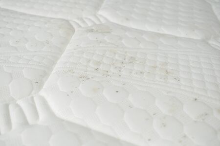 Mildew and dirt on a bed. Mattress with spots of mold spores.