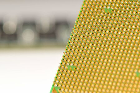 CPU with a memory on the background. Central processor unit. Golden pins of a processor.