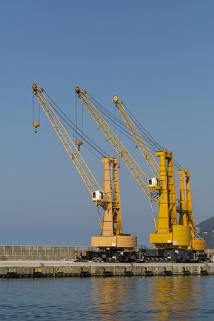 shipload: view of three cranes in a commercial harbor