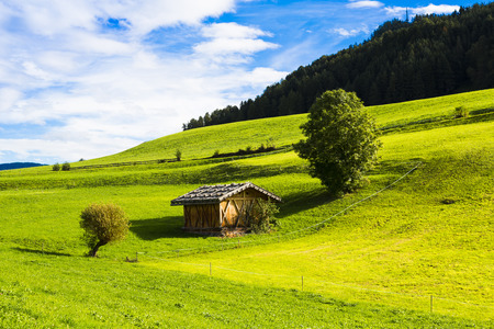 View of an alpine warehouse in a green meadow in Seiser Alm Stock Photo