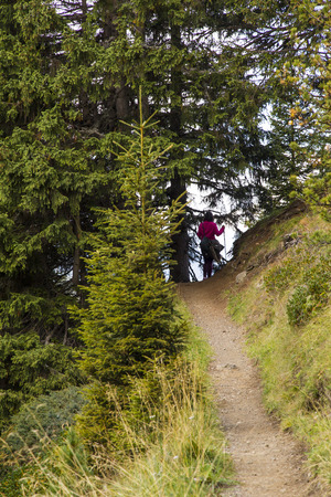 sud tirol: View of a hiking trail on Seiser Alm with hiker
