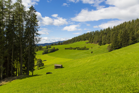 View a portion of the valley in Seiser Alm with green fields and blue sky