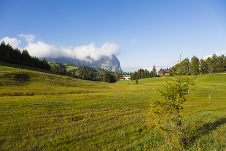 View of an expanse of grass in Seiser Alm