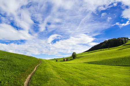 Panoramic view of green fields, blue sky with clouds in Seiser Alm Stock Photo