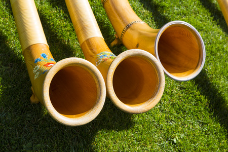 Top view of Alpine horns on green grass Stock Photo