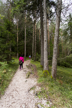 View a path in Seiser Alm with hikers